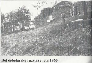 Del čebelarske razstave 1965